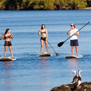 stand up paddle boarding gold coast watersports guru