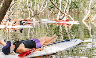 Mindfulness in the Mangroves Watersports Guru Kingscliff health and wellbeing
