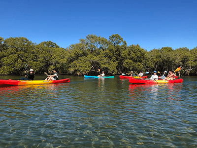 kayaking kingscliff nsw